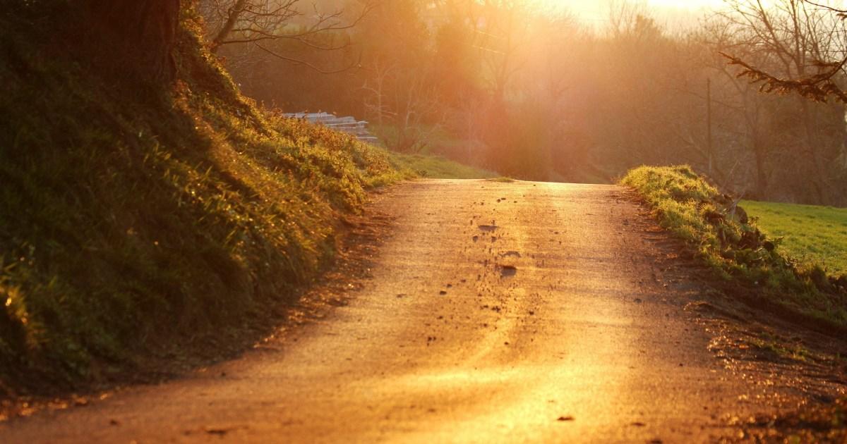 Camino de vida