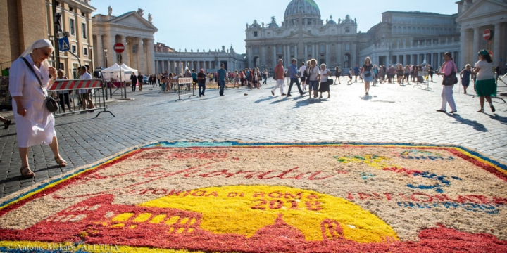 PETER AND PAUL FLOWERS VATICAN